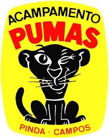 acampamento-dos-pumas logo g