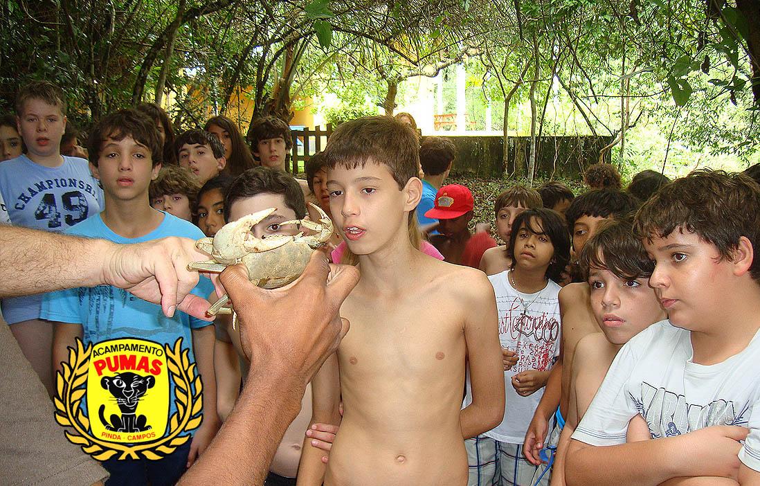 slidehome8-acampamento-dos-pumas